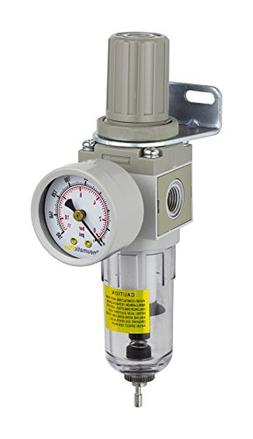 PneumaticPlus SAW2000M-N02BG Miniature Compressed Air Filter
