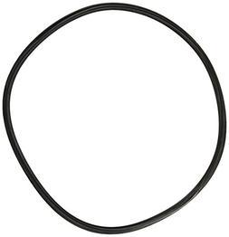 Hayward SPX4000TS Strainer Cover T-Ring